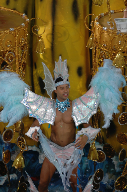 Carnival in Gay Brazil Photo 1