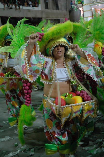 Carnival in Gay Brazil Photo 1 5
